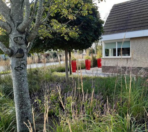 hoveniersbedrijf-dijkstra-scharsterbrug-tuinaanleg-project-02